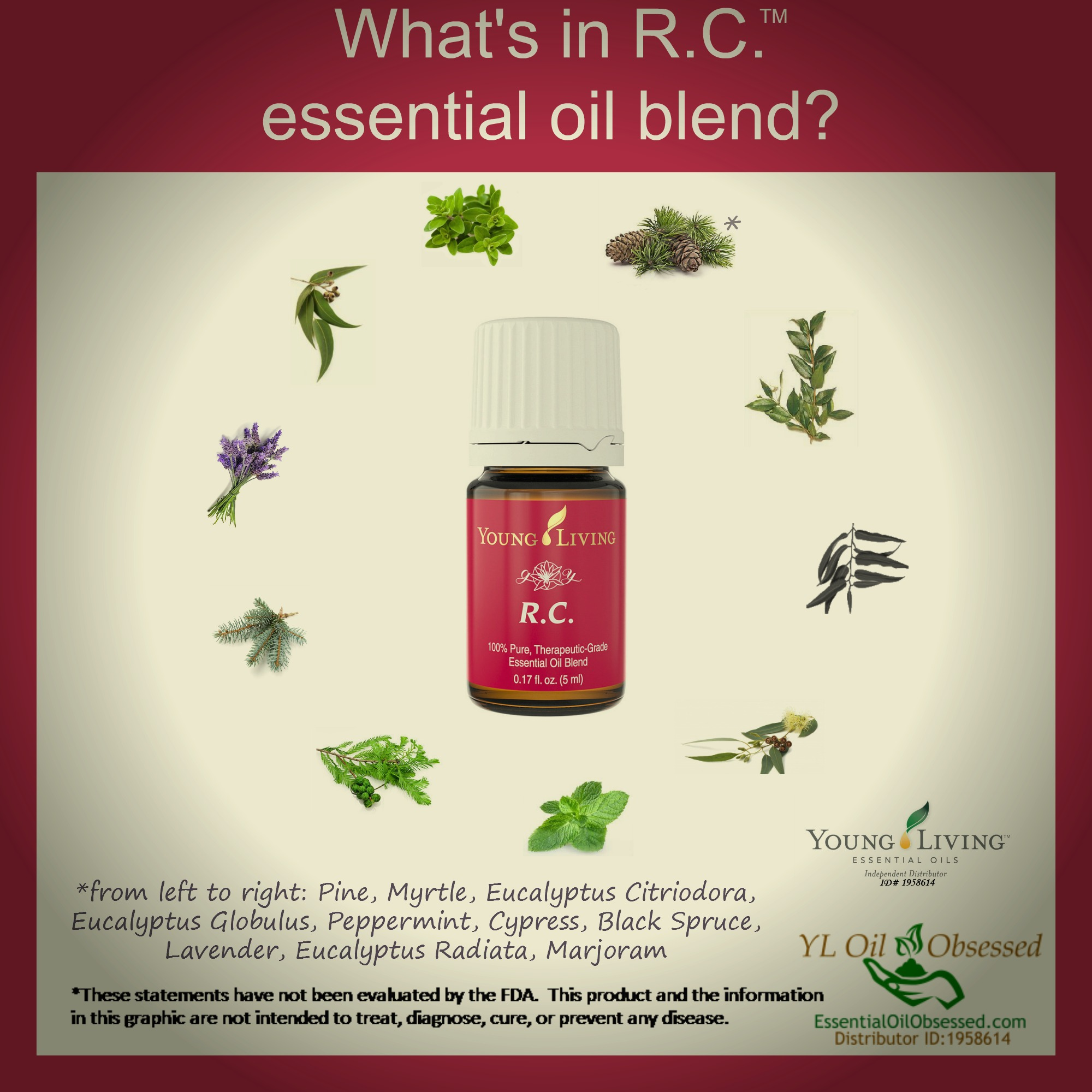 young living lavender direct application
